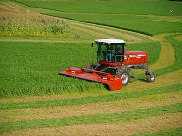 Ed Priebe | Ripon, Wisconsin | AGCO sales, service, and